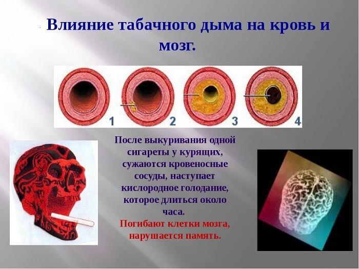 Влияние табака