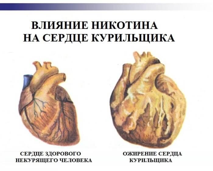 Воздействие на сердечную мышцу