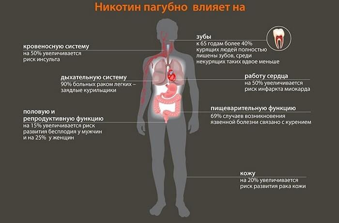 Влияние никотина на органы