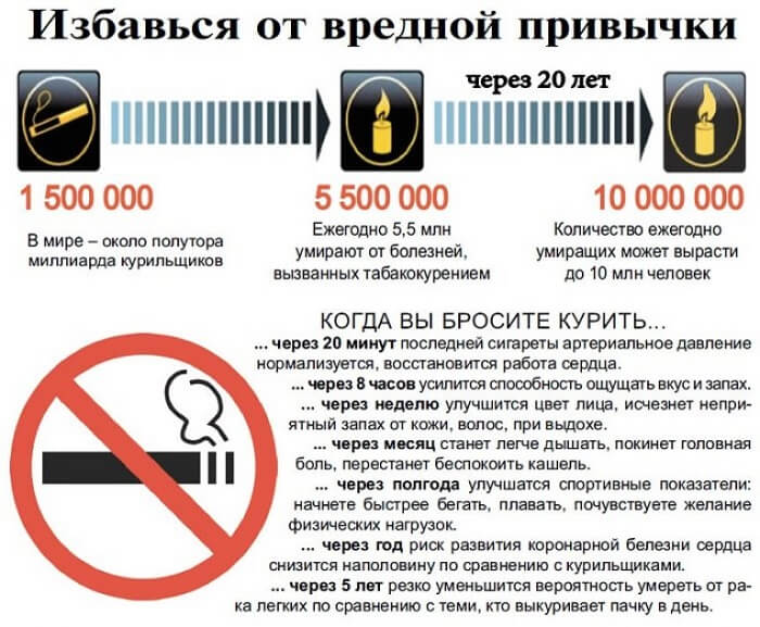 Влияние сигарет Герцеговина Флор
