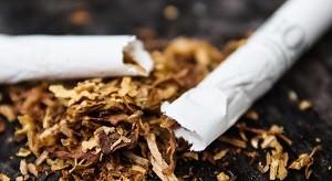 Сигареты с трубочным табаком