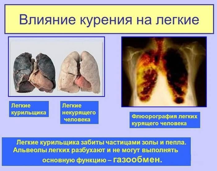 Влияние сигарет Ашима