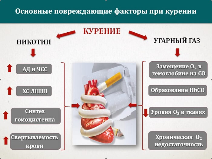 Влияние сигареты БТ