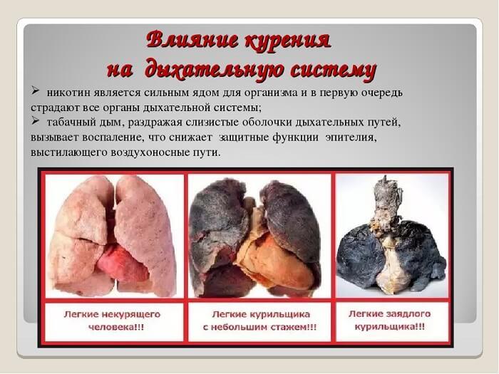 сигареты с трубочным табаком купить