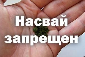 Ответственность за употребление насвая в россии 2019 год